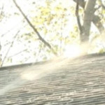 WNDU Special Reports – Angie's List: Roof Cleaning